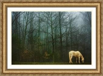White Horse in Winter (Framed)